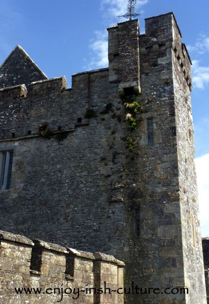 Inside the castle walls of Cahir Castle, County Tipperary.