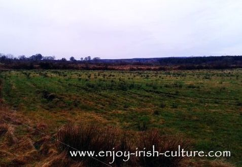 Potato ridges dating back to the days of the Great Famine, in County Roscommon, Ireland.