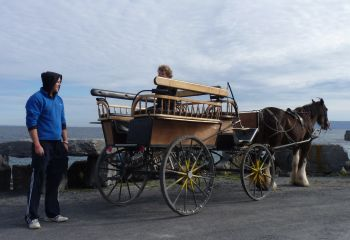 Inisheer, County Galway, Ireland- pony and trap is a great way to get around on the smallest of the Aran Islands.