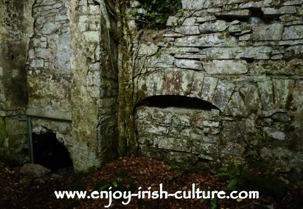 Inside the ruin of Moore Hall, County Mayo, Ireland,