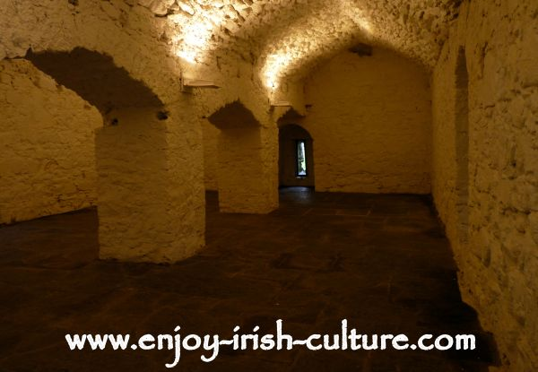 Athenry Castle in County Galway, Ireland, is one of the best preserved Irish castles. This is the downstairs vaulted room which was used as storage and was originally only accessible from above.
