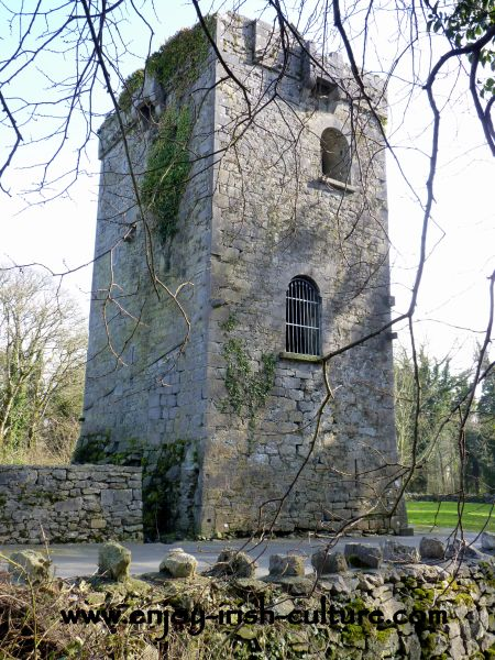 Renville Castle, County Galway, Ireland.
