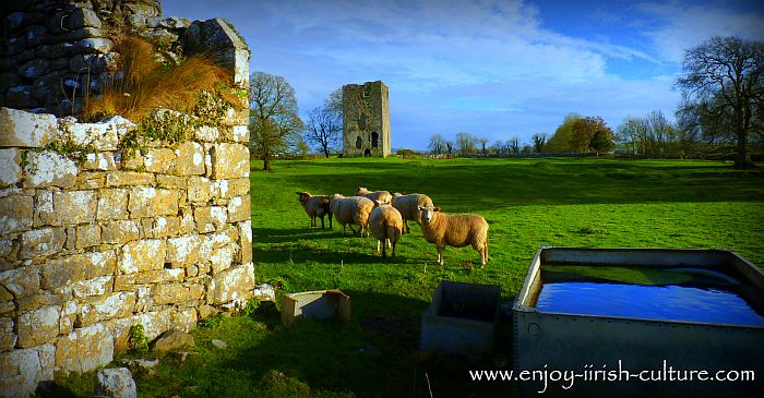 Moynard Castle, a medieval Irish castle in County Galway, Ireland.