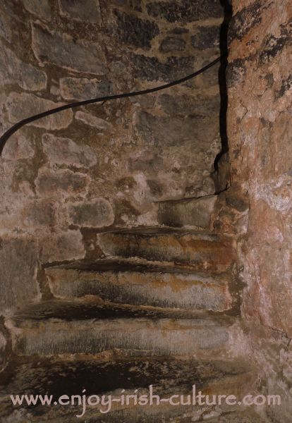 The medieval stairway at the castle.