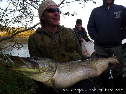 A pike caught near Castlebar, County Mayo, a real monster!