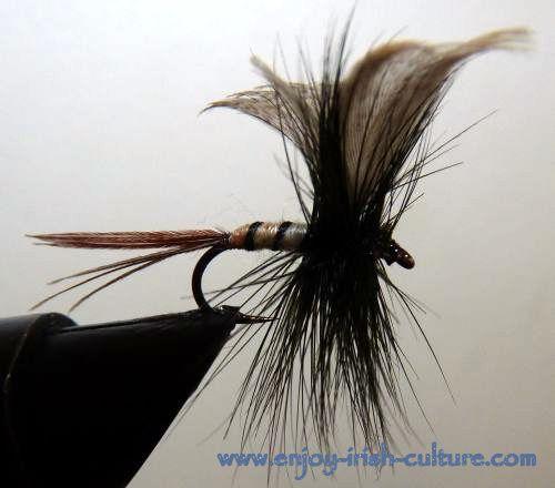 Irish fishing flies- a spent gnat.