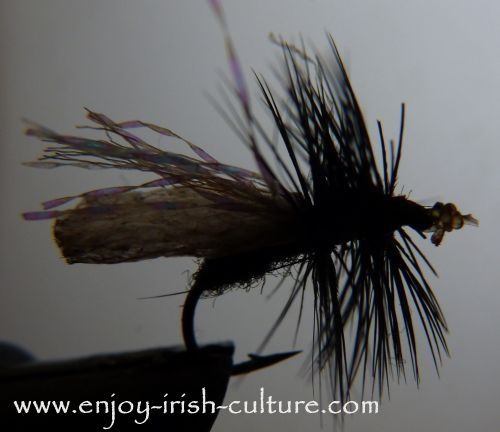 Try fly fishing Irish Lake Lough Corrib with a buzzer dry fly!