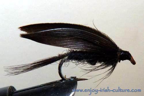 Irish fishing fly- a wet duckfly.