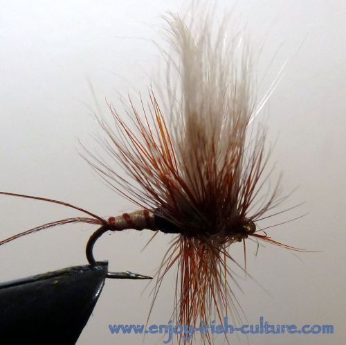 Irish fishing flies- a dry mayfly.