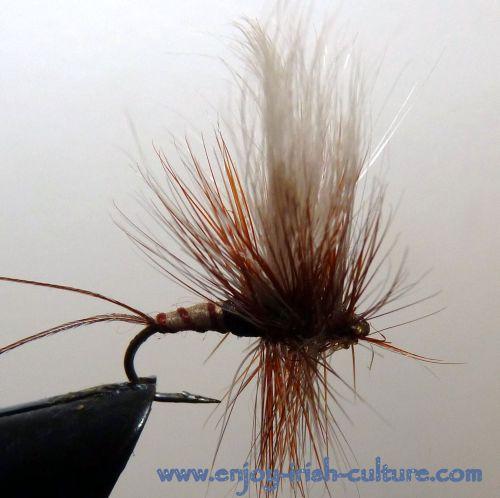 Irish fishing flies- a dry mayfly.