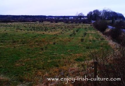 Traces left in the landscape of potato ridges dating back to the Irish Famine.