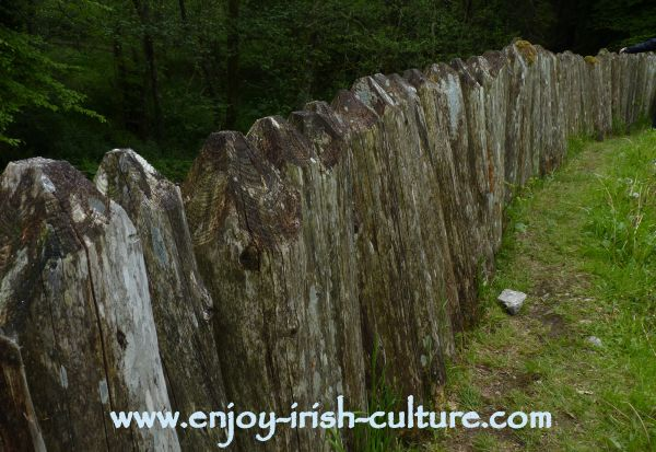 Heritage Museum at Craggaunowen, Quin, County Clare, Ireland- the wooden palisade around the defended ring fort.