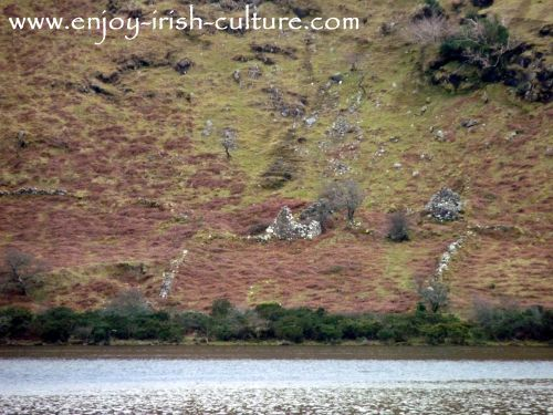 The ruins of an Irish famine cottage in County Mayo, Ireland.