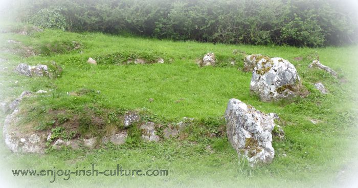 The Spectacles are archaeological remains of an early medieval settlement including a medieval field system.