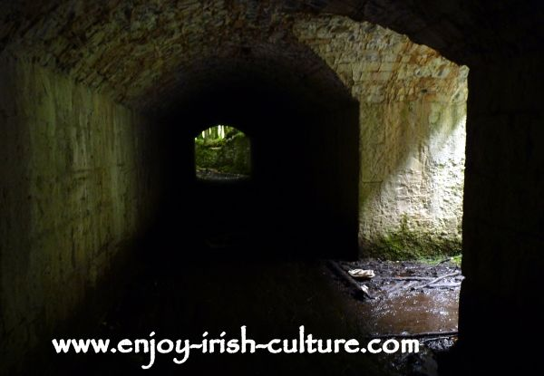 The ruin of Moore Hall, County Mayo, the servant's tunnel of the big house.