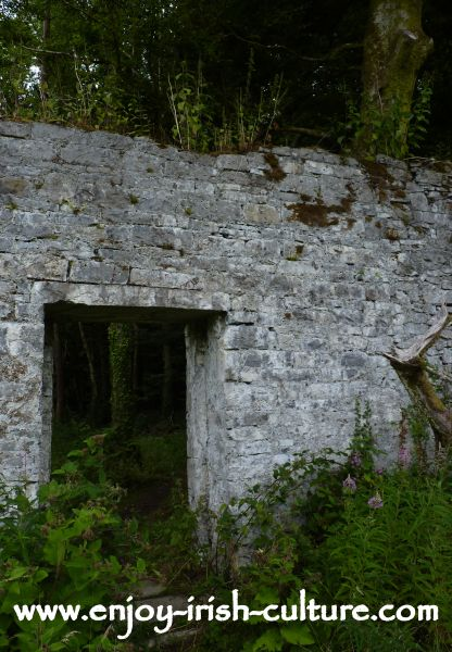 The walled garden of Moore Hall, County Mayo, Ireland which is the ruin of an Irish big house closely tied up with Irish history.