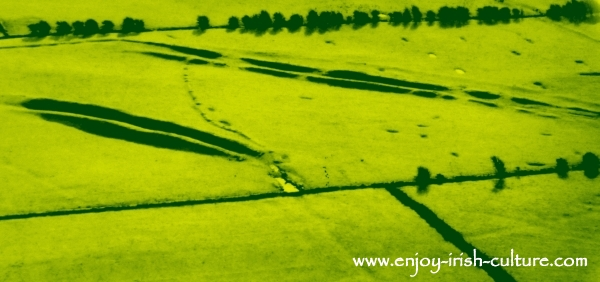 The Mucklaghs, ancient procession routes at Rathcroghan seen from the air.