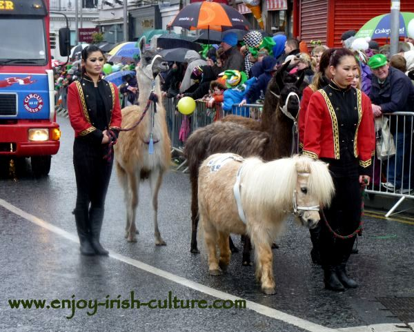 Paddy's Day in Galway, Ireland-circus animals