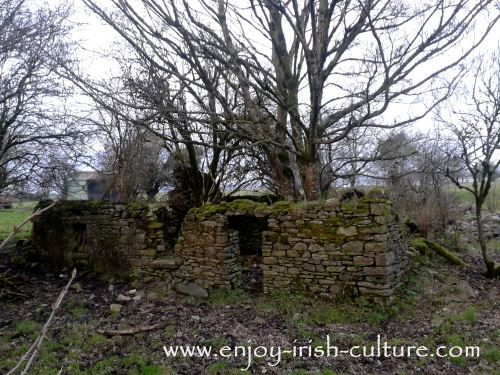 Abandoned Cottage, County Roscommon, Ireland.