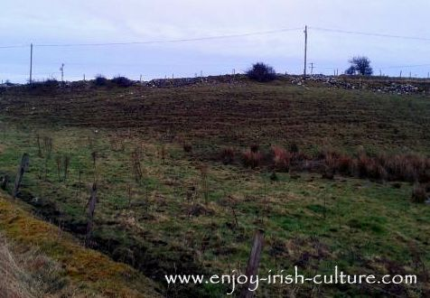 Traces in the landscape of old potato ridges dating back to the Irish Famine, County Roscommon, Ireland.