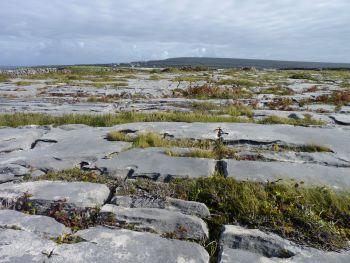 Stoney Inishmore landscape, County Galway, Ireland.