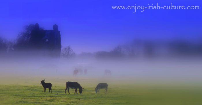 Ballinduff Castle, a medieval Irish castle in County Galway, Ireland.