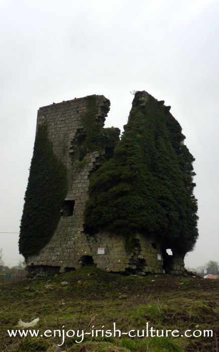 Clonboo Castle, County Galway, Ireland.