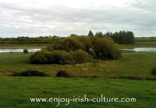 This is a real life unexcavated formmer island left from the times of ancient Ireland, located in Lough Gara, County Sligo, Ireland.