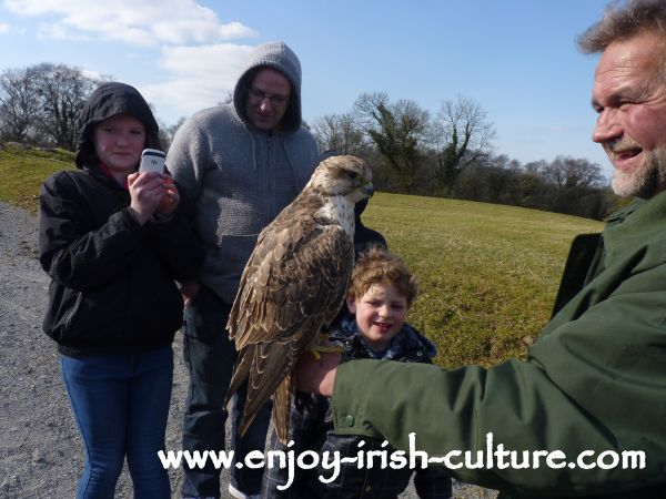 Lothar presents a falcon to the audience which is about to land on someone's arm.