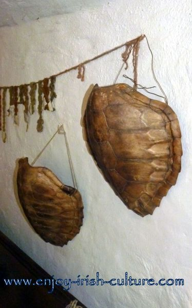 Heritage Museum at Craggaunowen, Quin, County Clare, Ireland- tortoise shells at the medieval Irish castle.